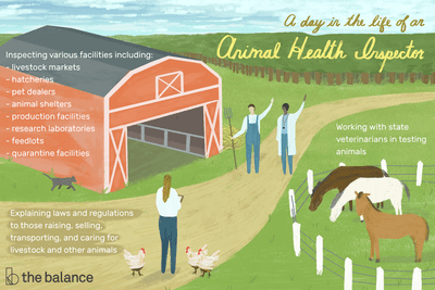 Image shows a farm scene with horses, chickens, a cat, with a farmer, doctor, and health inspector on the farm as well. Text reads: