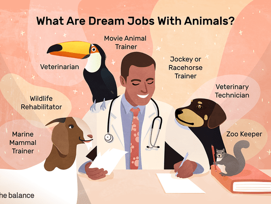 "Image shows a man in a labcoat with a stethoscope around his next. He is surrounded by a goat, a toucan, a dog, and a squirrel. Text reads: ""What are dream jobs with animals? Marine mammal trainer; wildlife rehabilitator; veterinarian; movie animal trainer; jockey or racehorse trainer; veterinary technician; zoo keeper"""