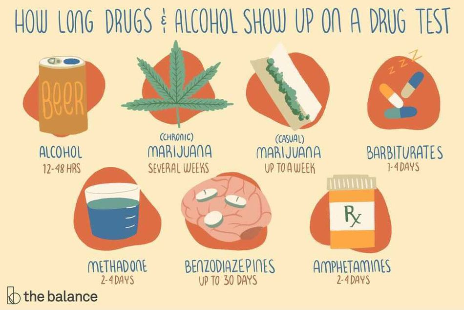 """This illustration describes """"How long drugs and alcohol show up on a drug test–Beer: 12-48 hours, Chronic use of marijuana: Several weeks, Casual marijuana use: Up to a week, Barbiturates: 1-3 weeks, methadone: 2-4 days, benzodiazepines: up to 30 days, amphetamines: 2-4 days"""""""