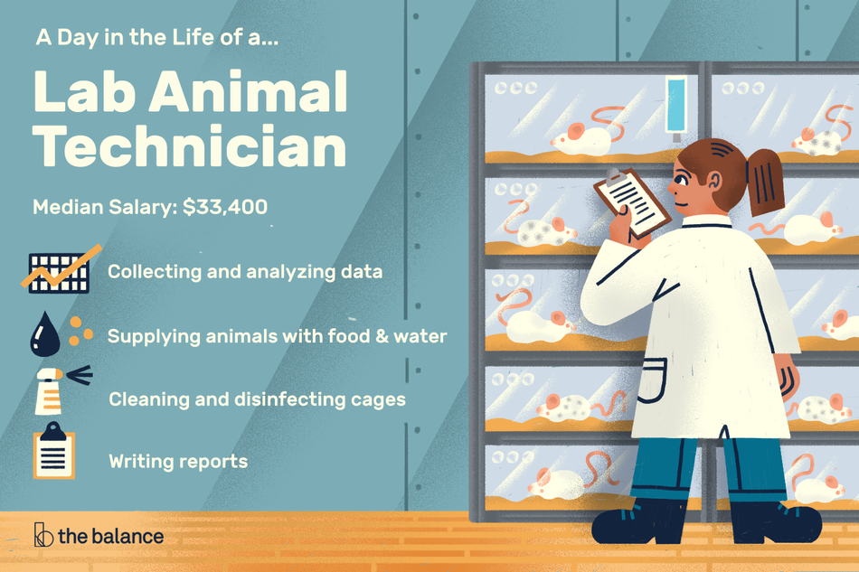 "Image shows a woman in a labcoat in front several cages with white rats in them. She's reading a clipboard. Text reads: ""A day in the life of a lab animal technician. Median salary: $33,400, collecting and analyzing data, supplying animals with food and water, cleaning and disinfecting cages, writing reports."""