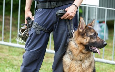 Humane Law Enforcement Officer: A Career Profile