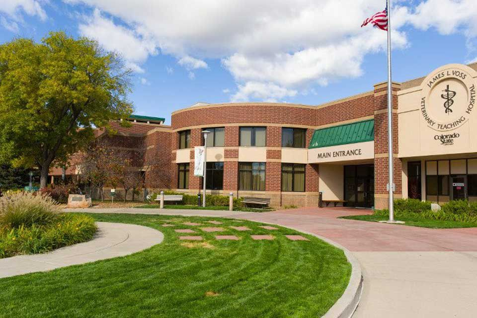 Picture of the Veterinary Teaching Hospital of Colorado State University