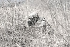 YEONCHEON, South Korea – Pvt. John Kilburn from Denver, Colo., a radio and communications security repairer assigned to Company B, 70th Brigade Support Battalion, 210th Field Artillery Brigade, 2nd Infantry Division, practices camouflaging his position during a field training exercise March 10 near Yeoncheon, South Korea. The battalion level exercise took place March 3-12 to help Soldiers practice their field craft skills.