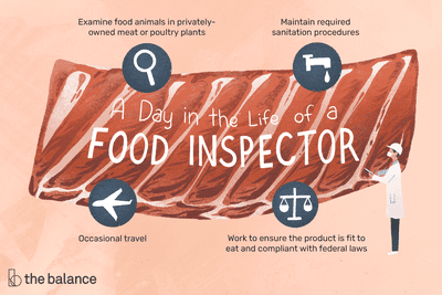 A day in the life of a food inspector: Examine food animals in privately-owned meat or poultry plants; maintain required sanitation procedures; occasional travel; work to ensure the product is fit to eat and compliant with federal laws