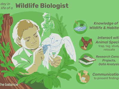 A day in the life of a wildlife biologist: knowledge of wildlife and habitats, interact with animal species trap, tag, study, relocate, research census projects, data analysis, communication to present findings