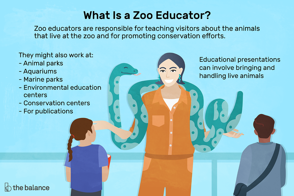Zoo Educator Job Description