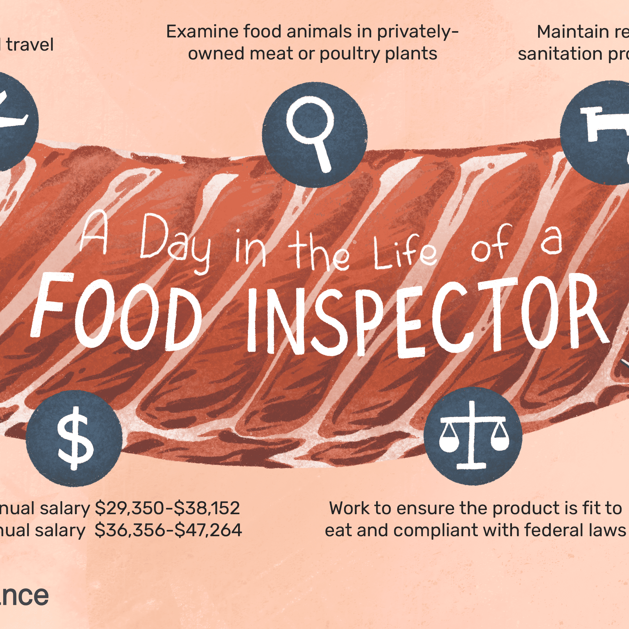 Food Inspector Job Description: Salary, Skills, & More