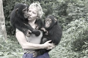 Debbie Cox Working with Protected Chimpanzees