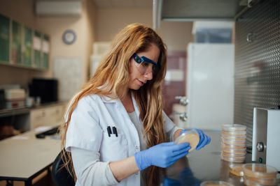 A research scientist is examining a petri dish.
