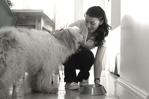 A pet sitter putting water bowl down for a sheepdog in her client's home.