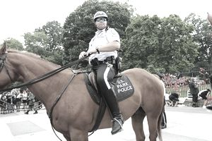 U.S. Park Police officer on horseback