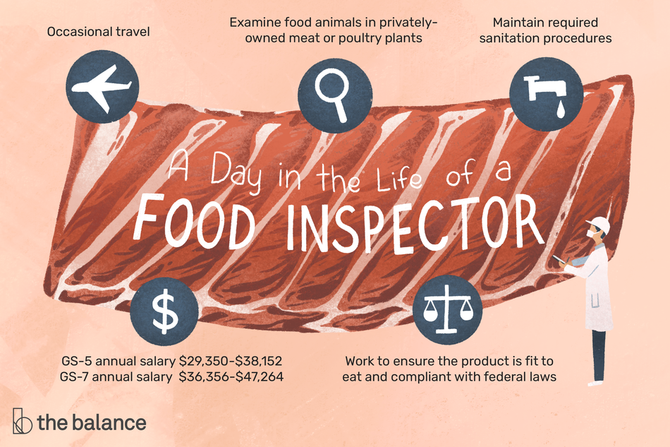 "Image shows a large piece of meat with a small human next to it, wearing a mask, hat, and labcoat and holding a clipboard. Text reads: ""A day in the life of a food inspector: occasional travel, examine food animals in privately-owned meat or poultry plants, maintain required sanitation procedures, work to ensure the product is fit to eat and compliant with federal laws, GS-5 annual salary: $29,350-$38,152, GS-7 annual salary: $36,356-$47,264"""