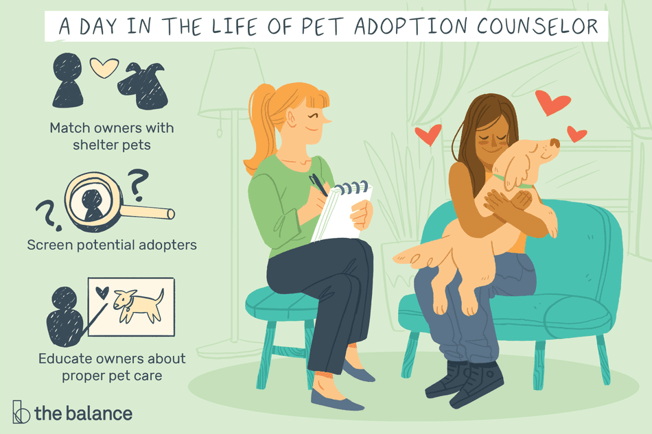 A day in the life of a pet adoption counselor: Match owners with shelter pets, screen potential adopters, educate owners about proper pet care