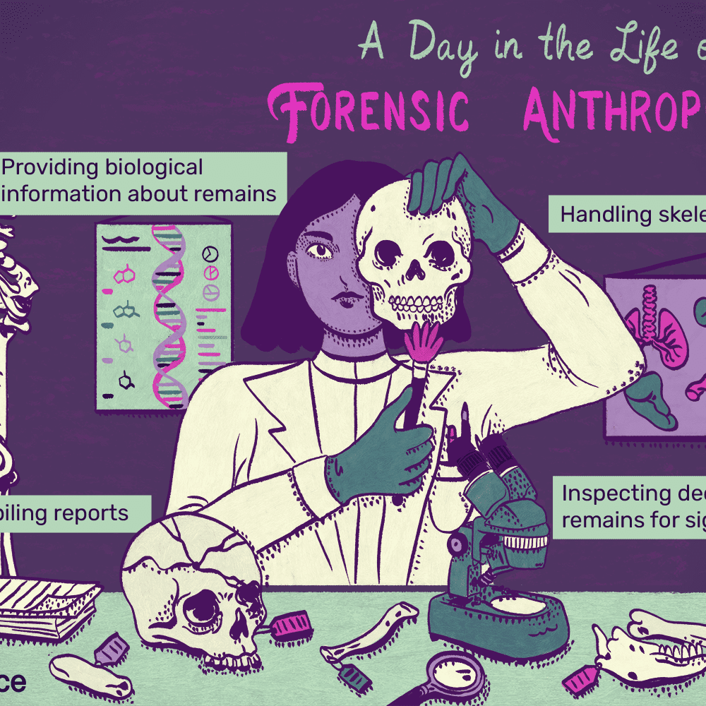 Forensic Anthropologist Job Description Salary Skills More