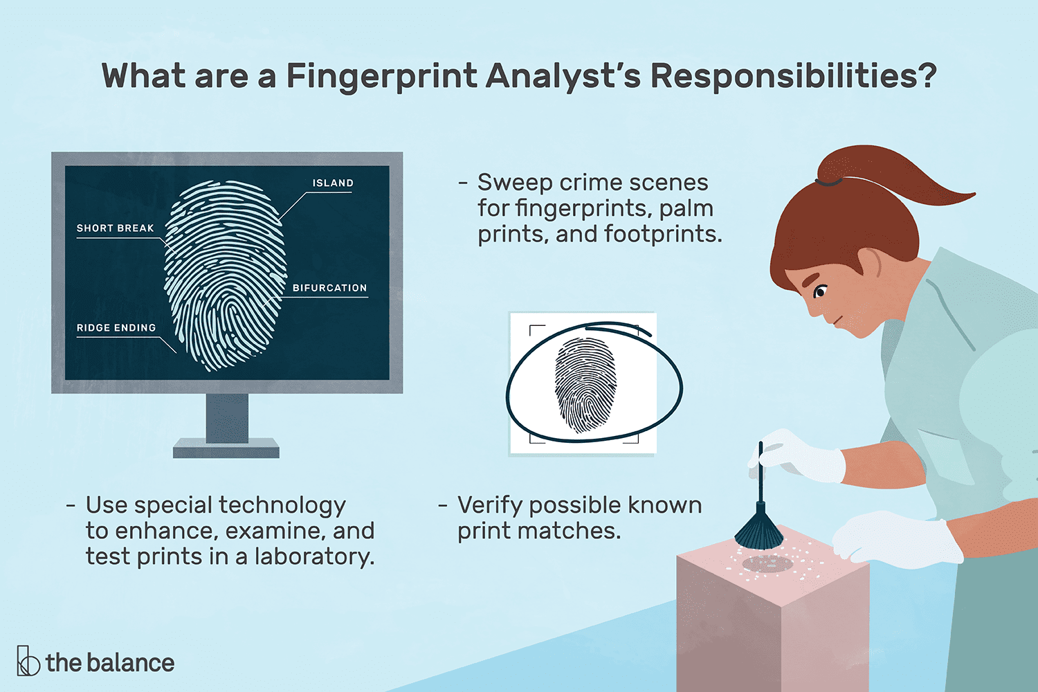 Fingerprint Analyst Job Description Salary Skills More