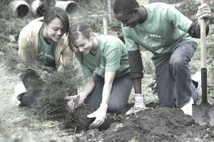 Happy teens planting a tree together