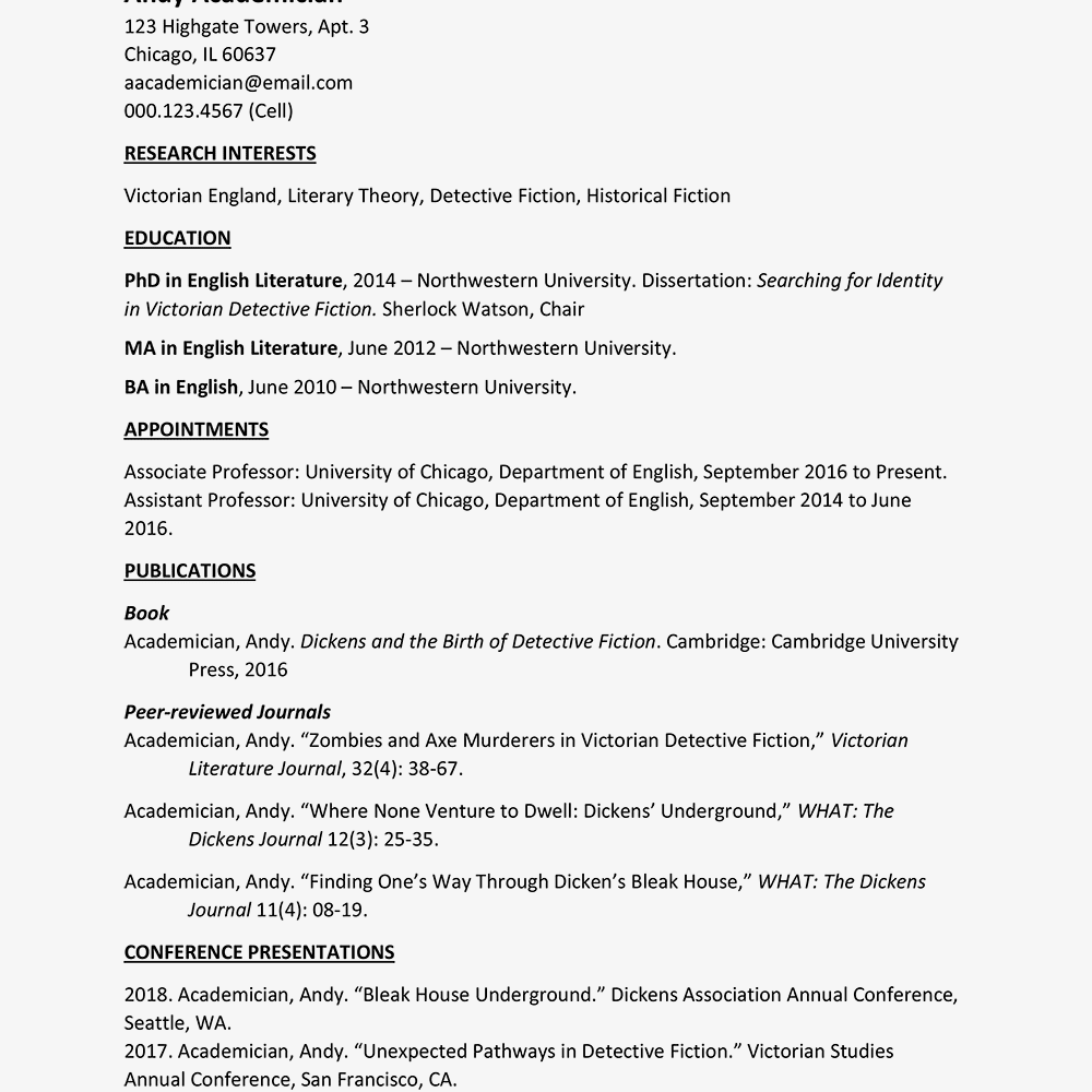 screenshot of a cv template