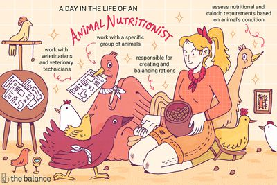 Image shows a woman sitting on the floor surrounded by a variety of farm birds. Text reads: