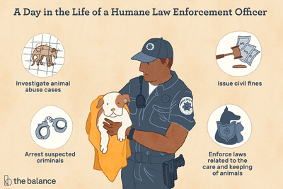 A day in the life of a human law enforcement officer: Investigate animal abuse cases, issue civil fines, arrest suspected criminals, enforce laws related to the care and keeping of animals