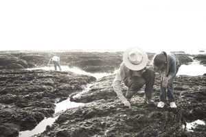 Park ranger showing tide pool to girl
