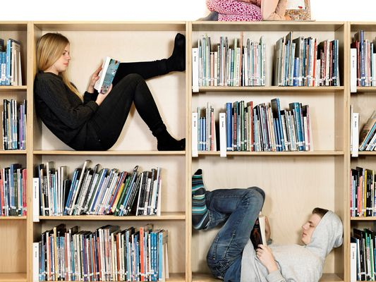 Siblings reading on book shelf