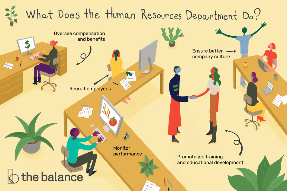 This illustration answers the question, What does the human resources department do? This includes