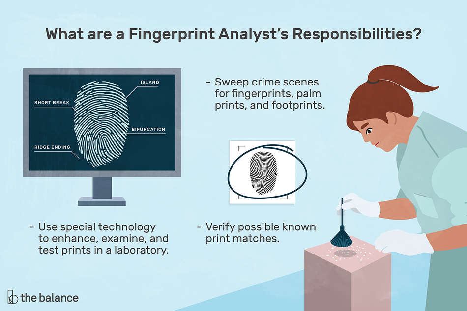 what are a fingerprint analyst's responsibilities?