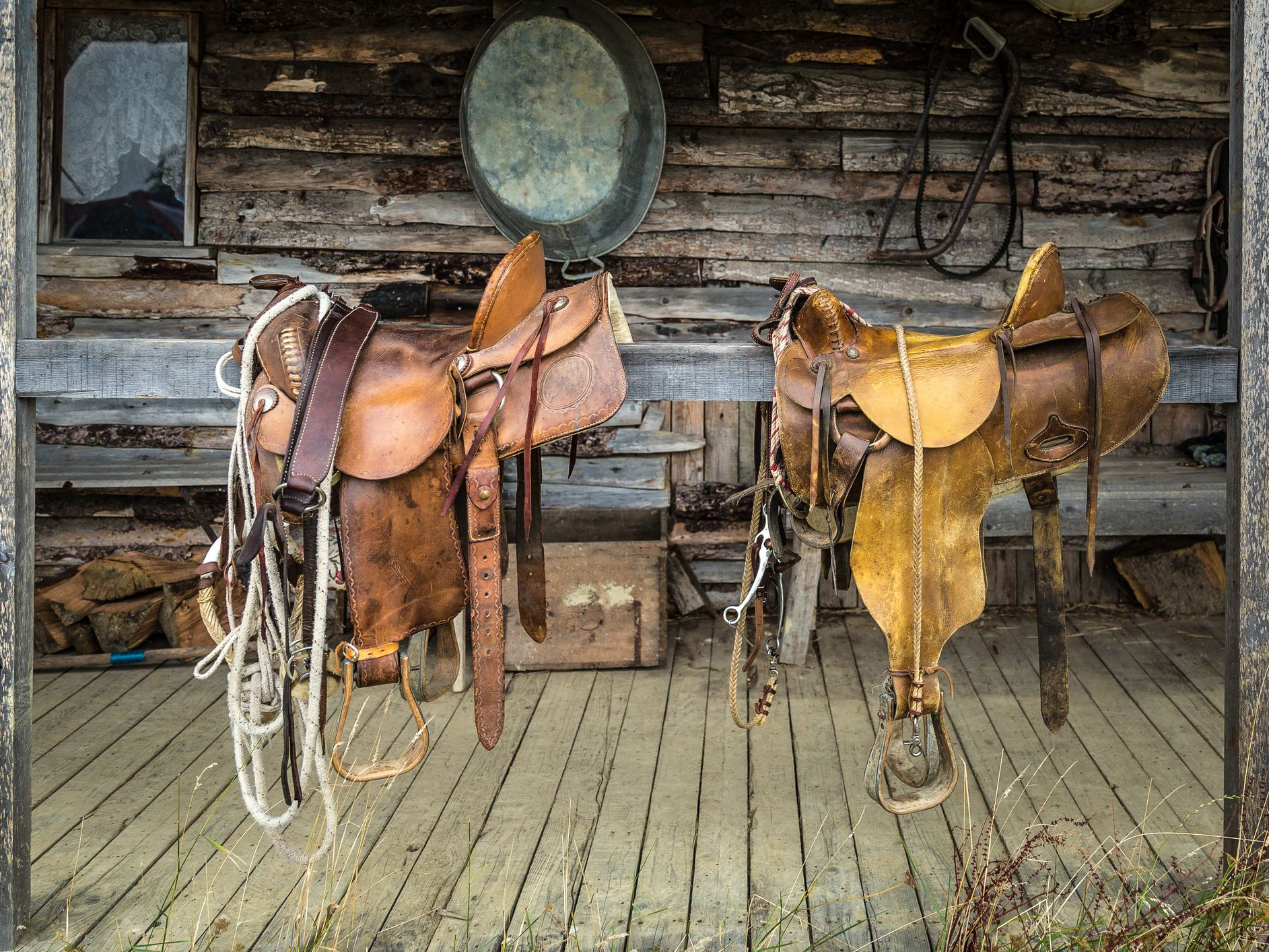 How to Start a Tack Shop Business