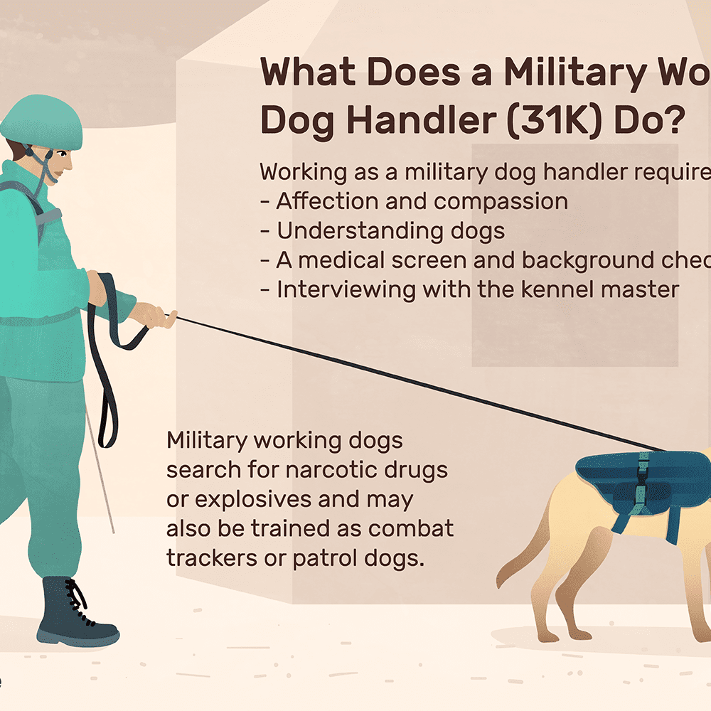 Military Working Dog Handler (31K) Job Description: Salary