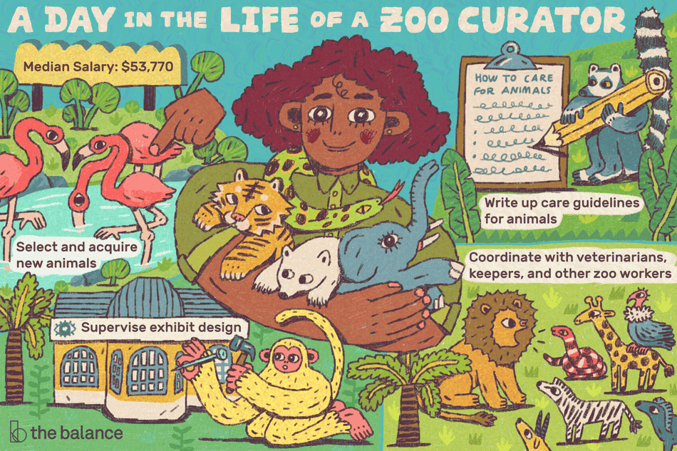"Image is a woman zoo curator holding a baby elephant, tiger, and polar bear in her arms with a snake around her neck. The scene is busy with other animals, including flamingos, a lemur, a monkey, a lion, zebra, giraffe, and vulture. Text reads: ""A Day in the Life of a Zoo Curator, median salary: $53,770, select and acquire new animals, supervise exhibit design, write up care guidelines for animals, coordinate with veterinarians, keepers, and other zoo workers"""