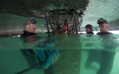 Army Divers Work To Repair A Portion Of The Main Port In Haiti