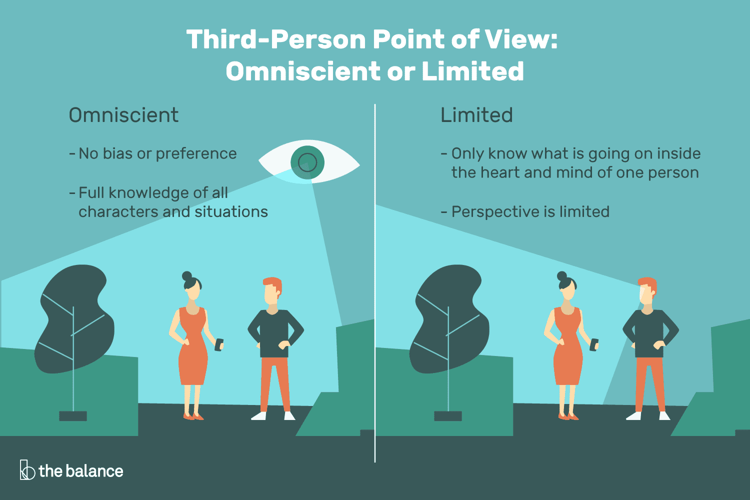 third person point of view infographic