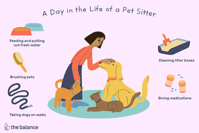 A day in the life of a pet sitter: Feeding and putting out fresh water, Brushing pets, Taking dogs on walks, Cleaning litter boxes, Giving medications