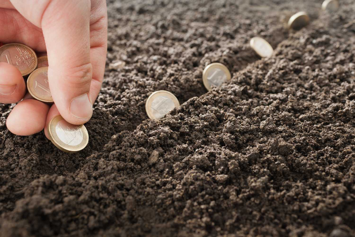 planting coins in the ground