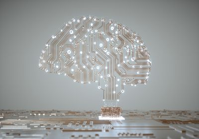 Digital Human Brain Covered with Networks