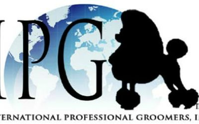 Learn How To Become A Pet Groomer