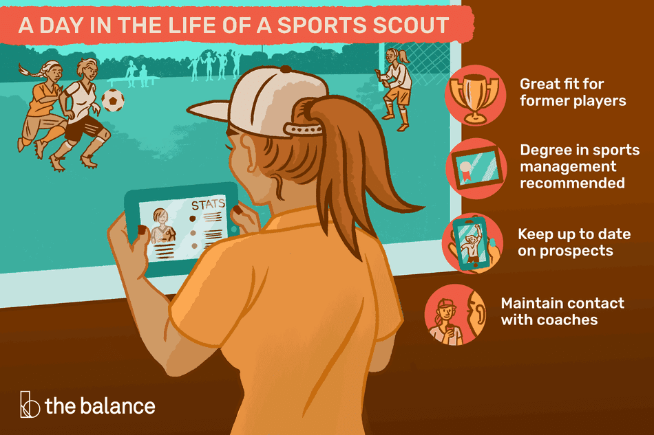A day in the life of a sports scout: Great fit for former players, degree in sports management recommended, keep up to date on prospects, maintain contact with coaches
