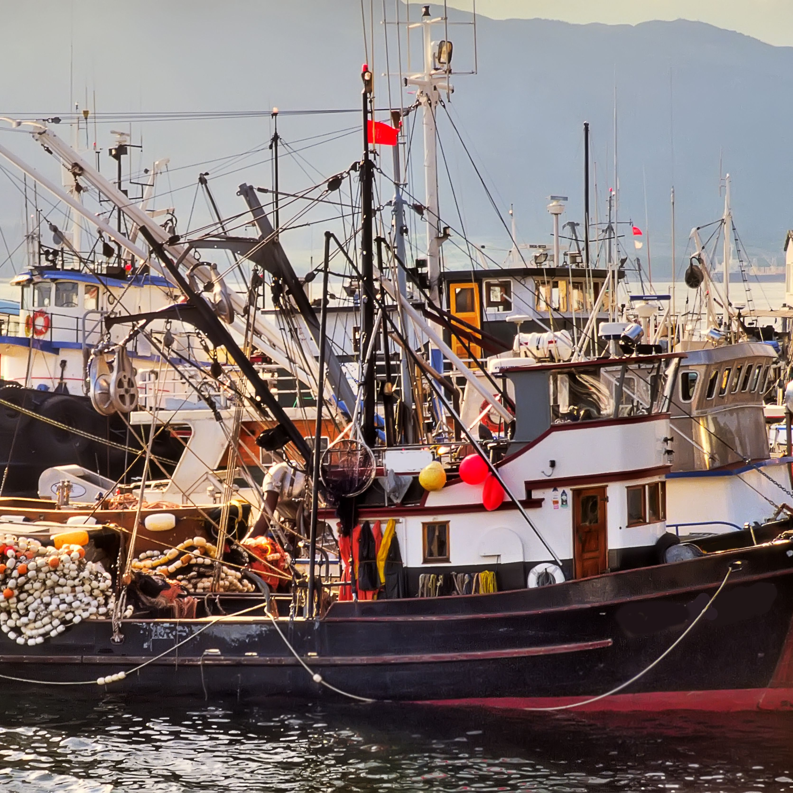 Learn All About Alaska Fishing Jobs