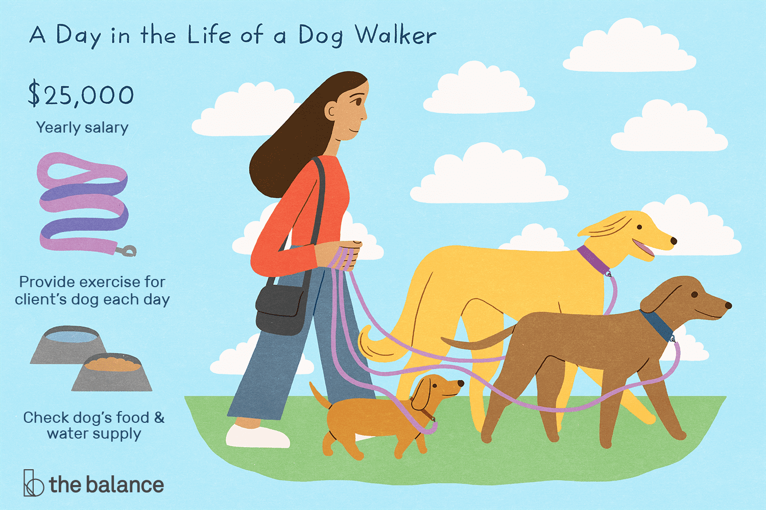 Dog Walker Job Description: Salary, Skills, & More