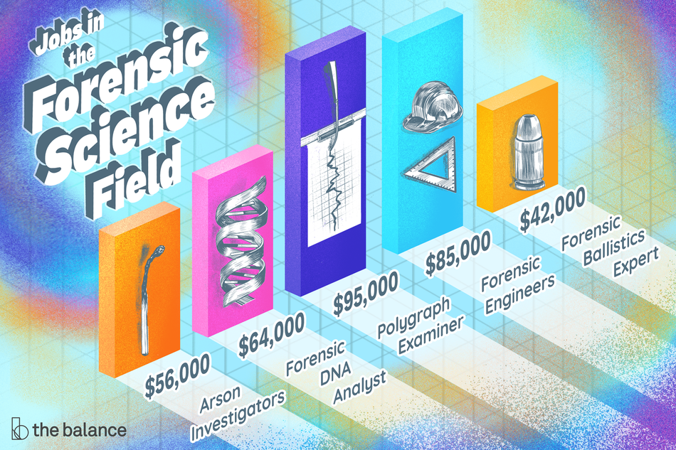"""Image shows a bar graph with retro, 80s colors. Text reads: """"Jobs in the forensic science field: Arson investigators ($56,000), Forensic DNA Analyst ($64,000), Polygraph Examiner ($95,000), Forensic Engineers ($85,000), Forensic ballistic expert ($42,000)."""