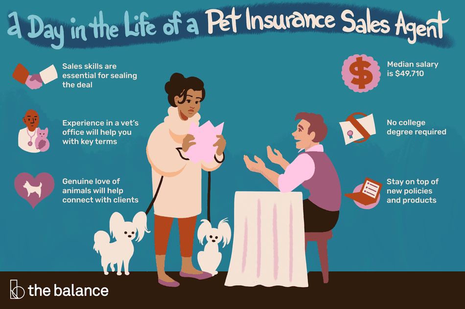 "Image shows a woman with two dogs talking to a man trying to sell her pet insurance. Text reads: ""A day in the life of a pet insurance sales agent: sales skills are essential for sealing the deal. experience in a vet's office will help you with key terms. genuine love of animals will help connect with clients. no college degree required. stay on top of new policies and products. median salary: $49,710"""