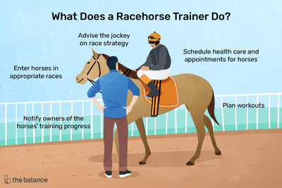What does a racehorse trainer do? Plan workouts, schedule health care and appointments for horses, advise the jockey on race strategy, enter horses in appropriate races, notify owners of the horse's training progress
