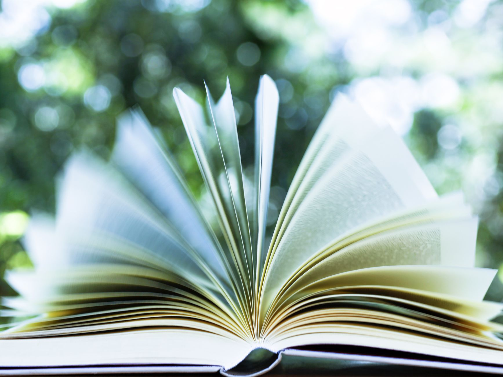 What Are the Different Parts of a Book?