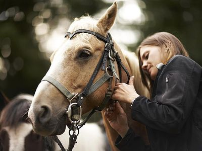 Woman caring for horse