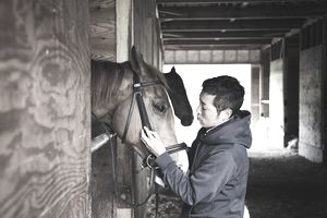 Man working in the horse stable